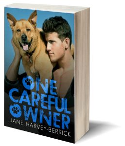 One Careful Owner Paperback
