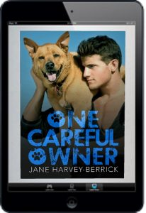 One Careful Owner iPad Cover
